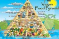 Alimenti ed Angstrom