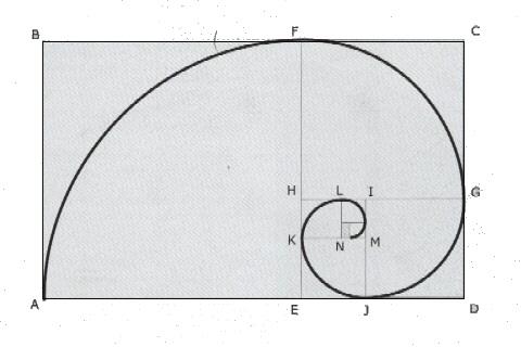 Fibonacci e la Sezione Aurea