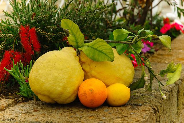 Benefici segreti del Limone (2)