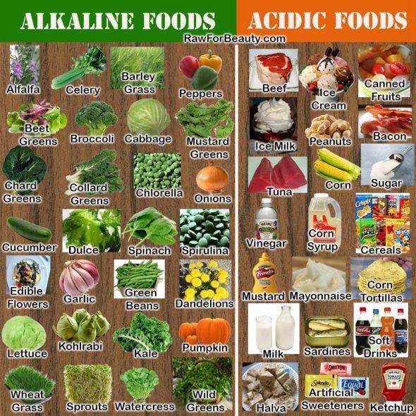 Cibi acidificanti e cibi alcalinizzanti 567