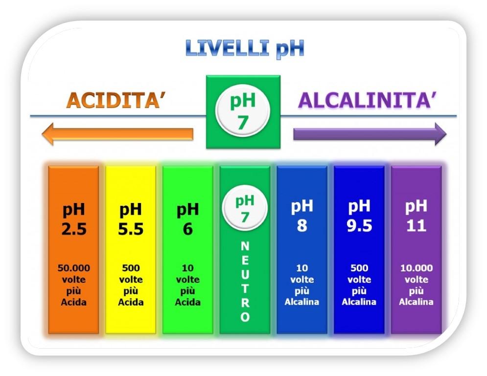 Cibi acidificanti e cibi alcalinizzanti