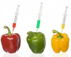 Additivi Alimentari 3
