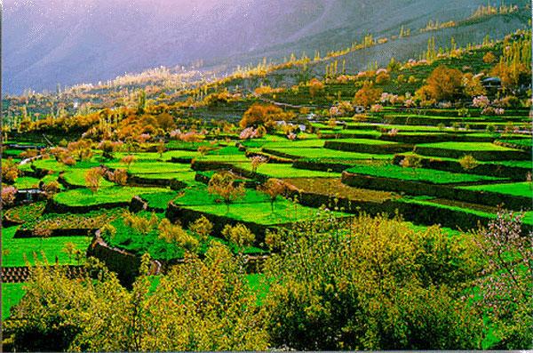 Gli Hunza la popolazione più longeva del mondo Terraced Fields