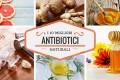 10 migliori antibiotici naturali