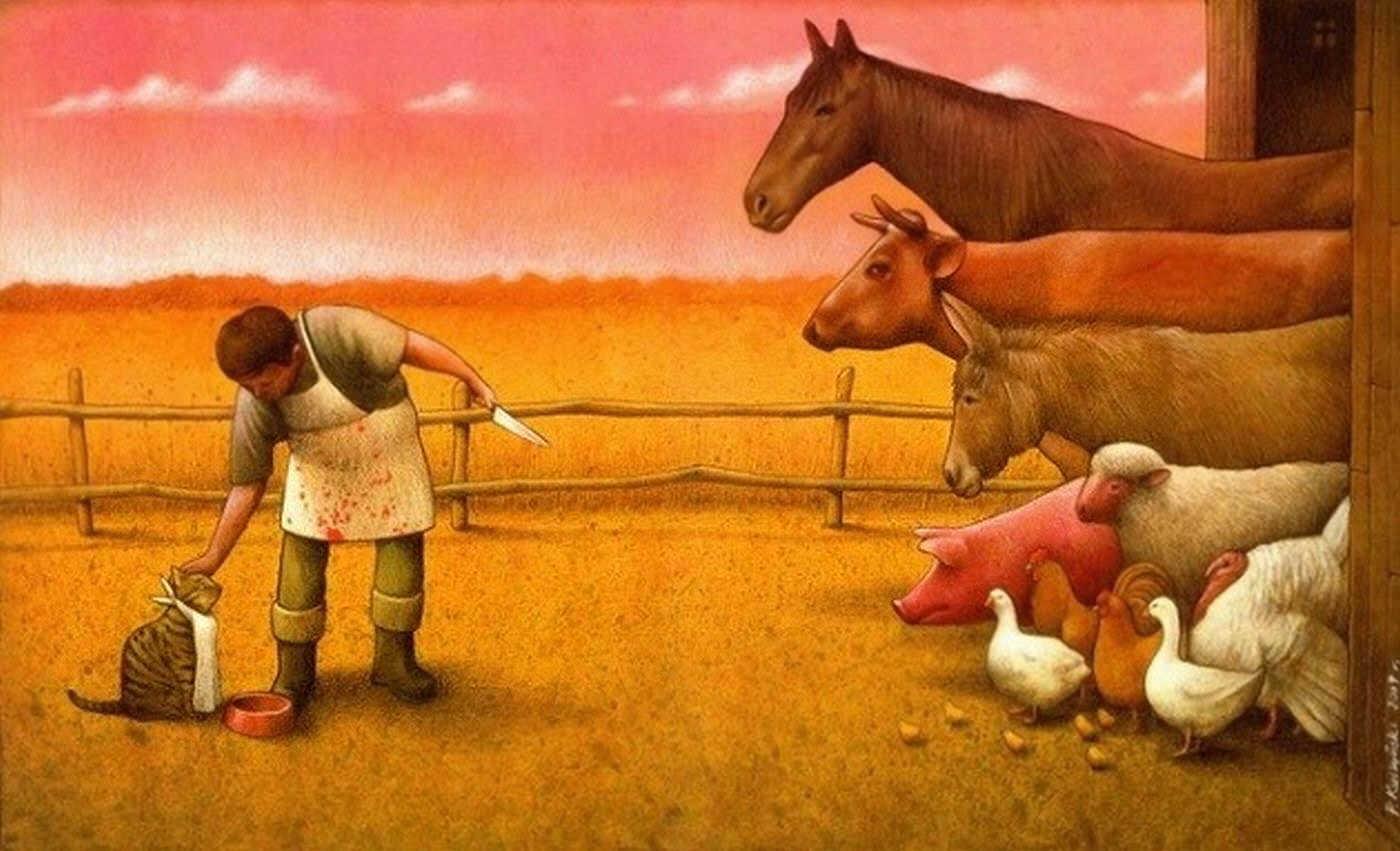Carne di Coniglio Pawel Kuczynski
