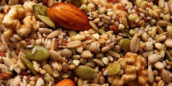 una manciatina di semi oleosi ogni giorno
