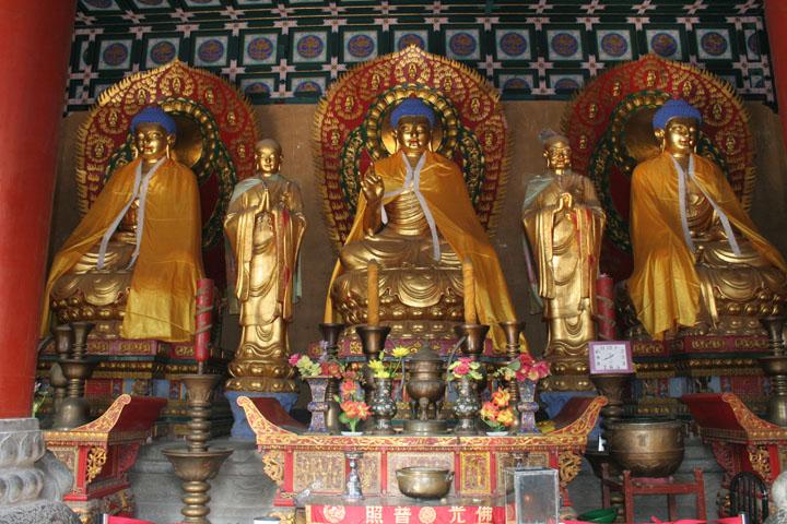 Alimentazione Dei Monaci Shaolin altare