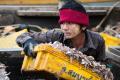 Schiavi Della Pesca In Thailandia