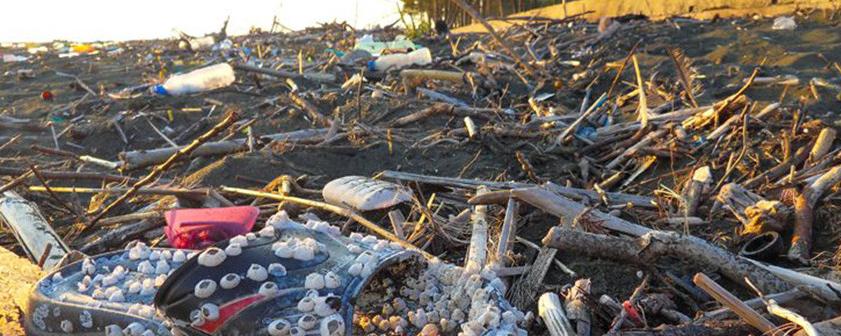 San Francisco vieta le bottiglie di plastica 003