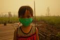 Olio di palma: Indonesia brucia