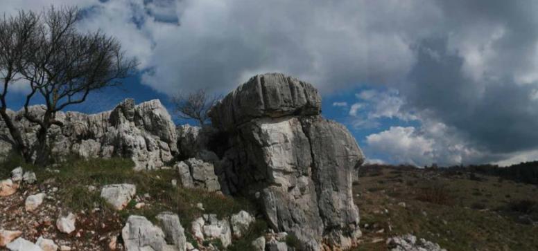 Sas De San Belin analisi geobiologica 002