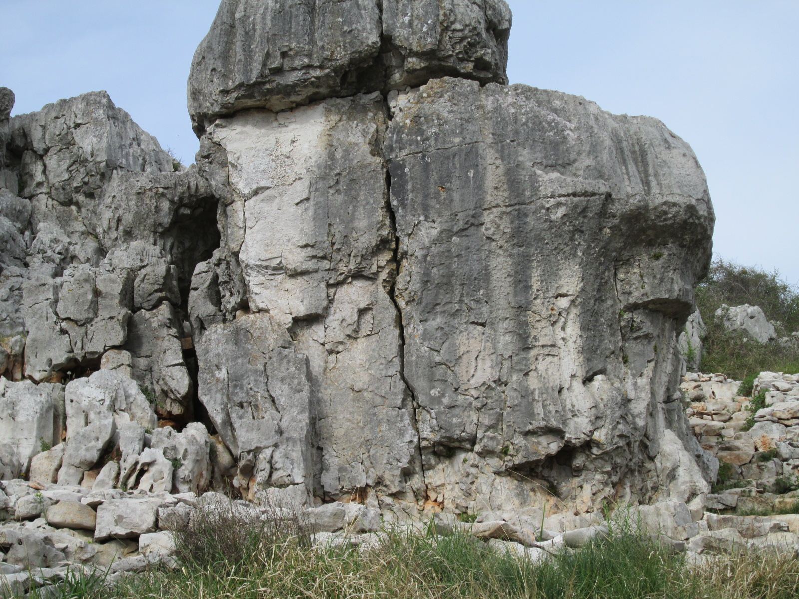 Sas De San Belin analisi geobiologica 0809