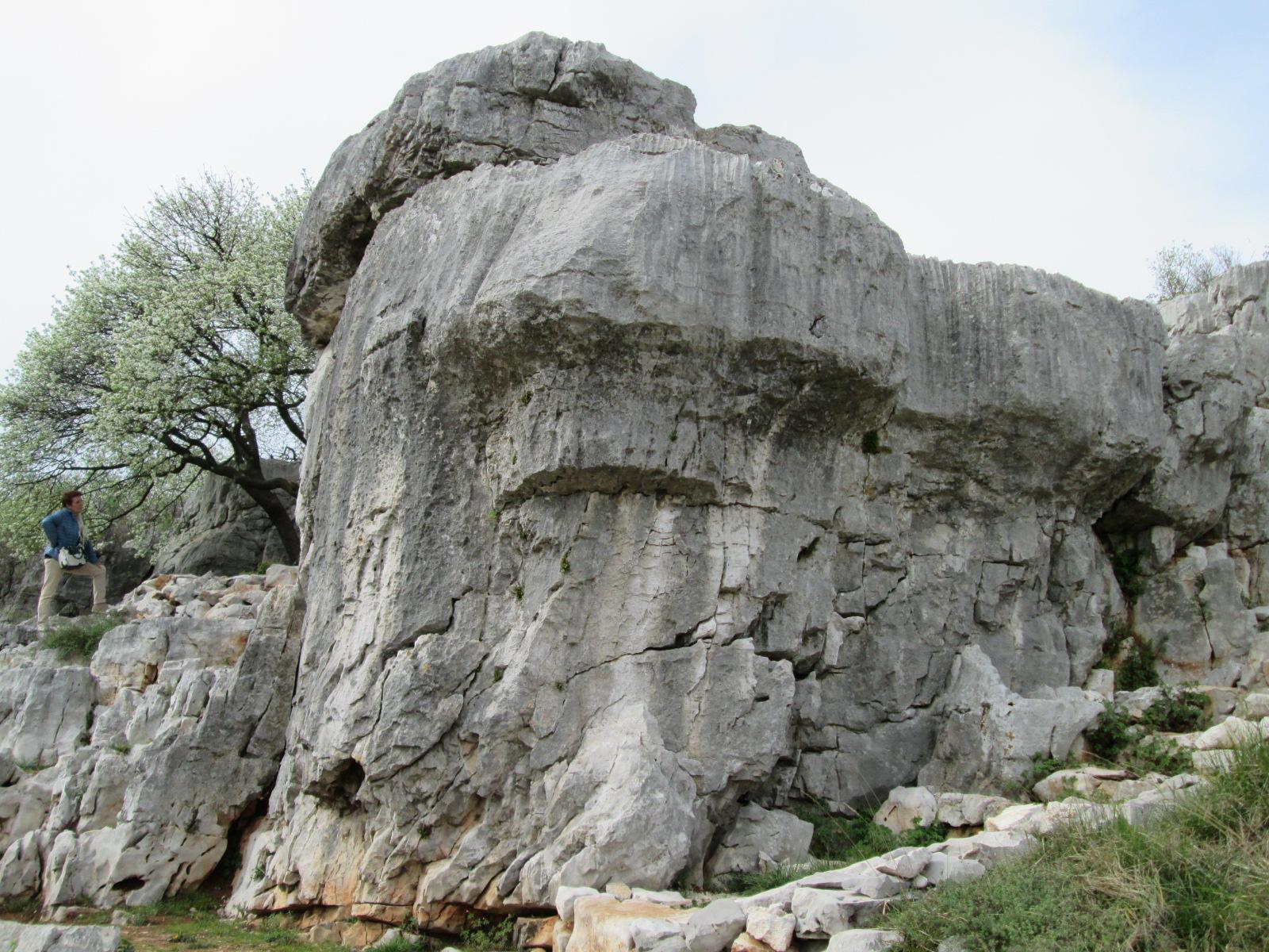 Sas De San Belin analisi geobiologica 0813