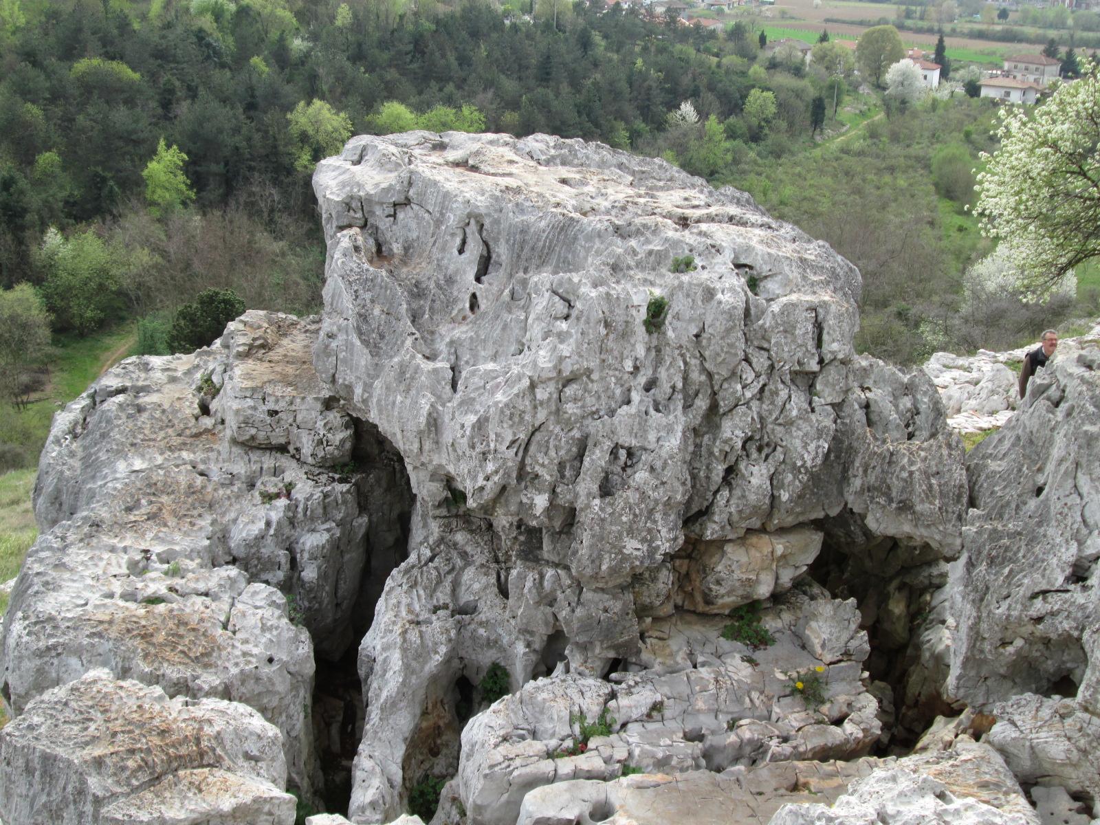 Sas De San Belin analisi geobiologica 0816