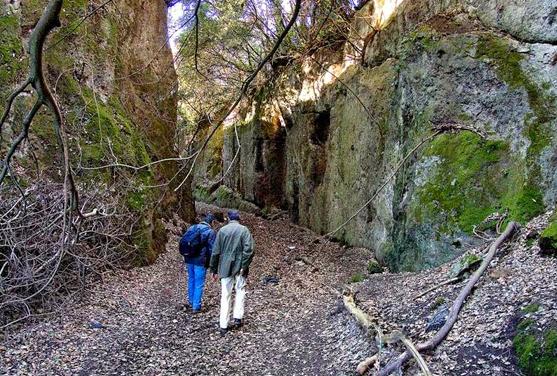 Luoghi ad Alta Energia Via Cava o Tagliata etrusca, scavata nel tufo - Toscana