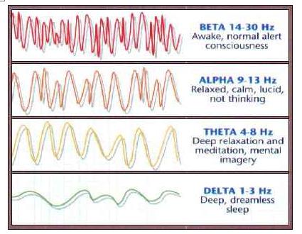 codice della vita 8 hertz onde cerebrali