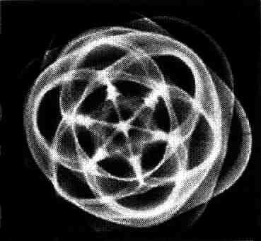 poligoni esperimento jenny