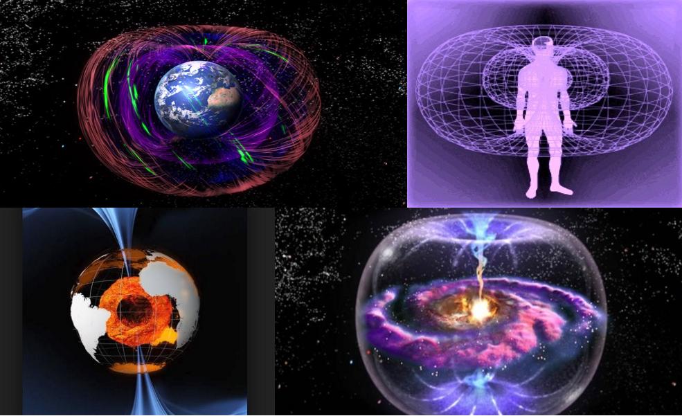 polarità e magnetismo centro gravita