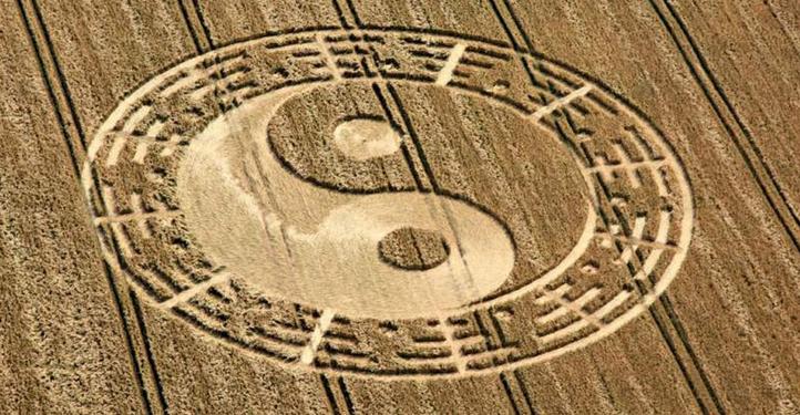 polarità e magnetismo crop-circle-tao