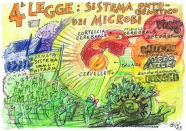 QUARTA LEGGE BIOLOGICA DI HAMER