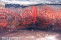 Le Affascinanti Spirali Della Tomba Della Scacchiera