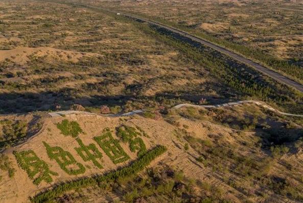 LA RIFORESTAZIONE NEL DESERTO
