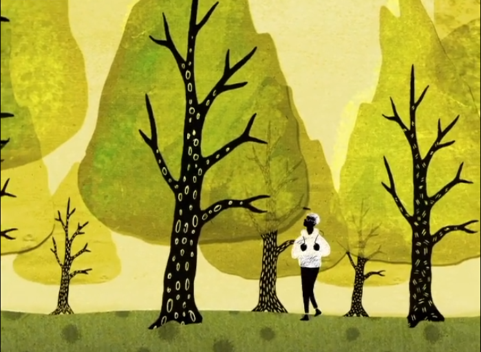 LE FORESTE SONO  ORGANISMI INTERCONNESSI