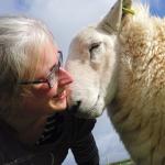 LA DONNA CHE HA CREATO UN OSPIZIO PER ANIMALI